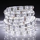 Biard LED IP65 5m 3528 Strip Light - Cool White