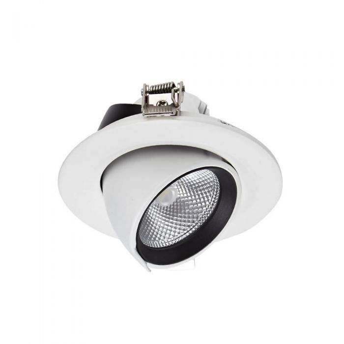 Biard LED 10W Directional Recessed Down Light